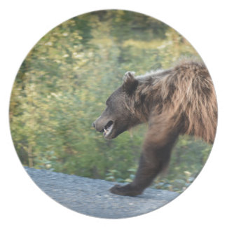 Grizzlybär Yukon, Kanada Tassen, Taschen, T - Teller