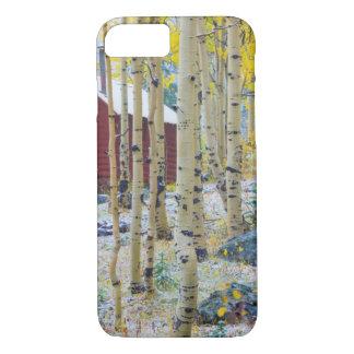 Großartige alleine Kabine MESAs in einem Wald iPhone 8/7 Hülle
