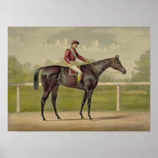 Großartiger Racer Kingston - Vintages Pferdelaufen Poster