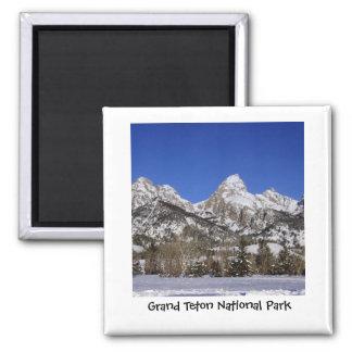 Großartiger Teton Nationalpark-Magnet Quadratischer Magnet