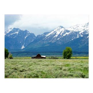 Großartiger Teton Nationalpark Postkarte