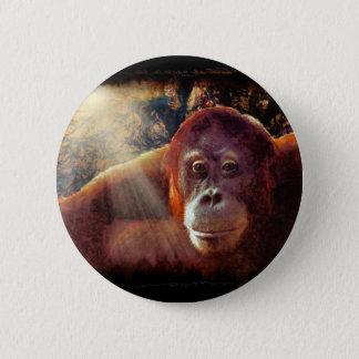 Große Affen-Primat Tier-Liebhaber Geschenk Runder Button 5,1 Cm