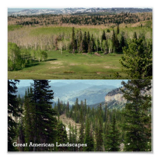 Große amerikanische Wile-Landschaften Poster