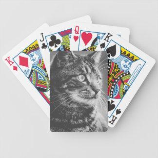 Große Augen des Tabby-Profil-| | Schwarzweiss Bicycle Spielkarten