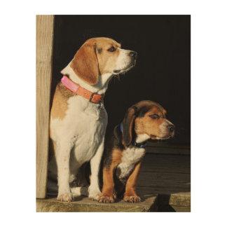Große Beagle-Schwester u. kleiner Bruder-Beagle Holzwanddeko