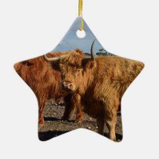 Große Brown-Hochland-Kühe, Keramik Ornament
