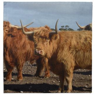 Große Brown-Hochland-Kühe, Stoffserviette