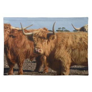 Große Brown-Hochland-Kühe, Tischset