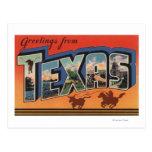 Große Buchstabe-Szenen Texas (Cowboy, der Stier Postkarte