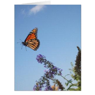 GROSSE Karte des Monarchfalters im Flug
