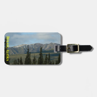 Große Plätze - Denali Alaska einfache Kofferanhänger