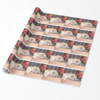 Große Pyrenäen-Packpapier Geschenkpapier