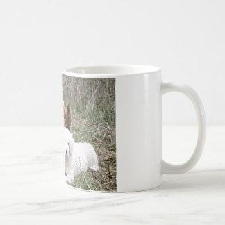 Große Pyrenäen-Welpe mit freien Streckenhühnern Kaffeetasse