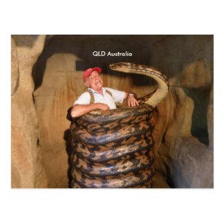 Große Schlange der Postkarten-große Schlangen-QLD Postkarte