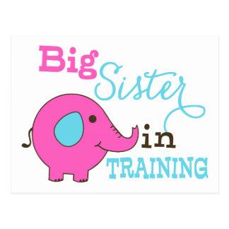 Große Schwester im Trainings-Elefanten Postkarte