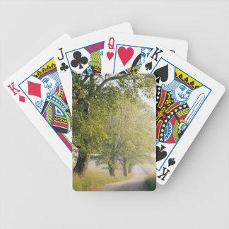 Große Smokey Berge Cades Bucht-|, TN Bicycle Spielkarten