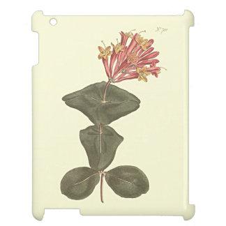 Große Trompete-Geißblatt-botanische Illustration iPad Hülle