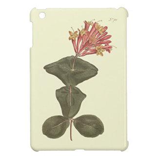 Große Trompete-Geißblatt-botanische Illustration iPad Mini Hülle