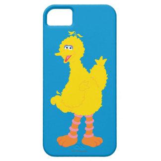 Große Vogel-Grafik iPhone 5 Case