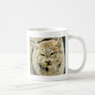 Große Wildkatze Kaffeetasse