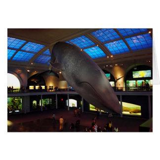 Großer Blauwal Grußkarte