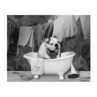 Großer Gefährte der Badzeit Postkarte