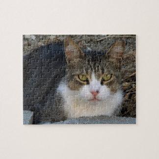 Großer Jungen-Grün-Mit Augen Katzen-Puzzlespiel Puzzle