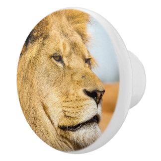 Großer Löwe, der weit weg schaut Keramikknauf