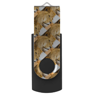 Großer Löwe, der weit weg schaut USB Stick