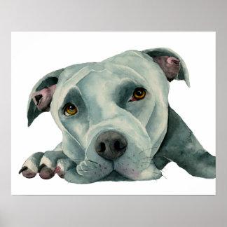 Großer Ol Kopf - Pitbull-HundeAquarell-Malerei Poster