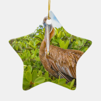 Großer Pelikan am Baum, Galapagos, Ecuador Keramik Stern-Ornament
