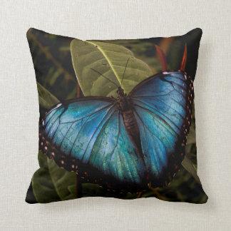 Großer, schöner, blauer Schmetterling Kissen