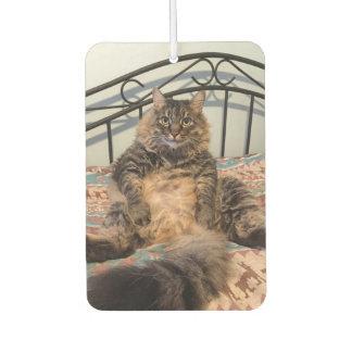 Großer umarmbarer Katzen-Auto-Lufterfrischer Autolufterfrischer