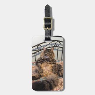 Großer umarmbarer Katzen-Gepäckanhänger Gepäckanhänger