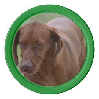 Großer Vizsla Hund Poker Chips Set
