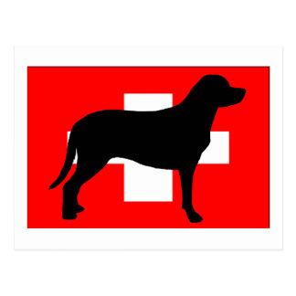 größere Schweizer Gebirgshundesiloflagge die Postkarte