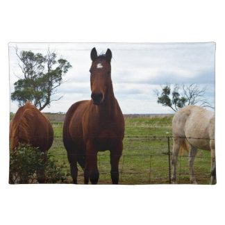 Großes ausgezeichnetes Pferd Browns, Tischset