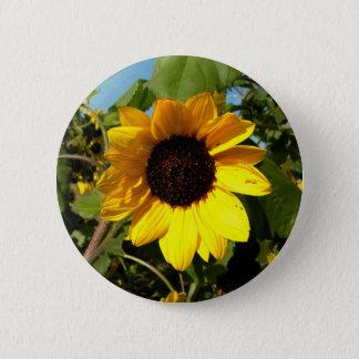 Großes Gelb Runder Button 5,7 Cm