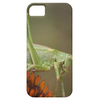 Großes grünes Bush-Kricket (Tettigonia Barely There iPhone 5 Hülle