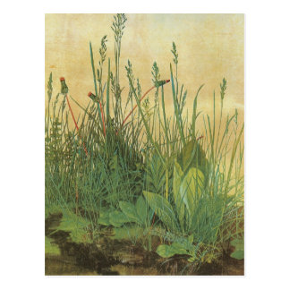 Großes Stück Rasen Postkarte