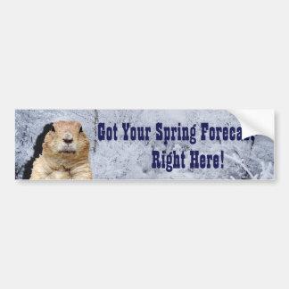 Groundhog Frühlings-Prognose Autoaufkleber