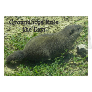 Groundhogs Regel der Tag - Groundhog Day-Karte Karte