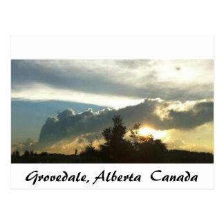 Grovedale, Alberta Postkarte