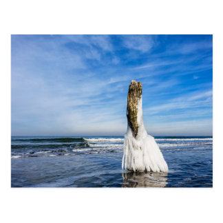 Groyne auf Ufer der Ostsee im Winter Postkarte