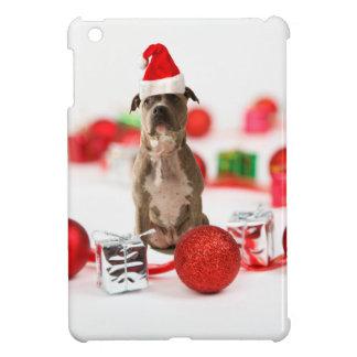 Gruben-Stier-Hund mit Geschenkboxen-und iPad Mini Hülle