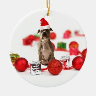 Gruben-Stier-Hund mit Geschenkboxen-und Keramik Ornament