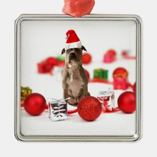 Gruben-Stier-Hund mit Geschenkboxen-und Quadratisches Silberfarbenes Ornament