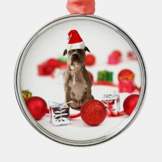 Gruben-Stier-Hund mit Geschenkboxen-und Rundes Silberfarbenes Ornament
