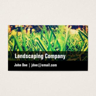 Grün, schwarz, Gras, Visitenkarte landschaftlich