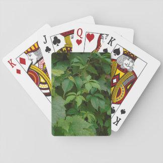 Grün verlässt Herbst boho keltisches niedliches Spielkarte